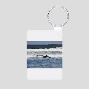 Beach Birds Photography & Pro Aluminum Photo Keych