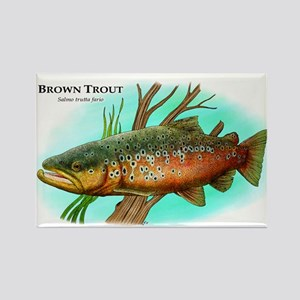 Brown Trout Rectangle Magnet