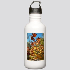 Autumn Glow / Stainless Water Bottle 1.0L