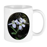 Spring Beauty Wild Flower Mug