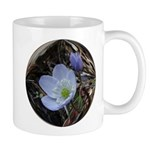 Oregon Anemone /Wind Flower Mug