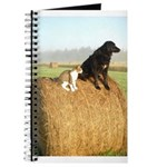 Cat and Dog on Hay Bale Journal