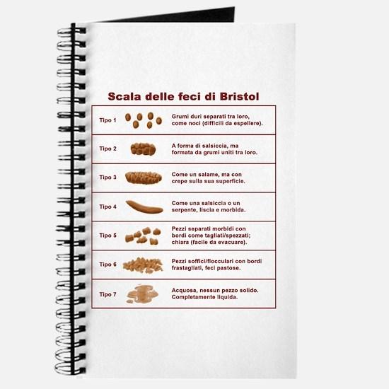 Scala delle feci di Bristol Journal