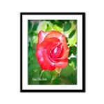 Fiery Rose Framed Panel Print