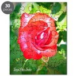 Fiery Rose Puzzle