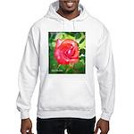 Fiery Rose Hooded Sweatshirt