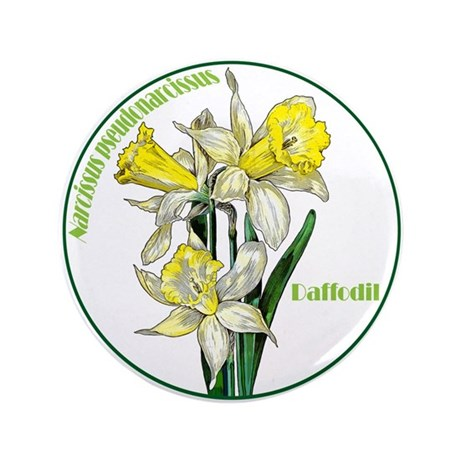 """The Spring Daffodil 3.5"""" Button"""