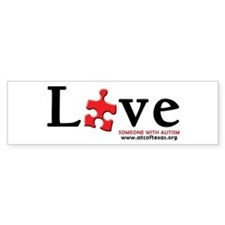 Love Someone with Autism Sticker (Bumper)