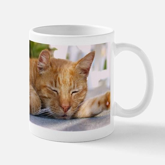 Sleeping Cat Mug