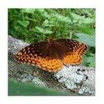 Great Spangled Fritillary Tile Coaster