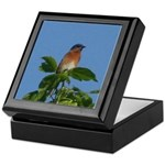 Treetop Bluebird Keepsake Box