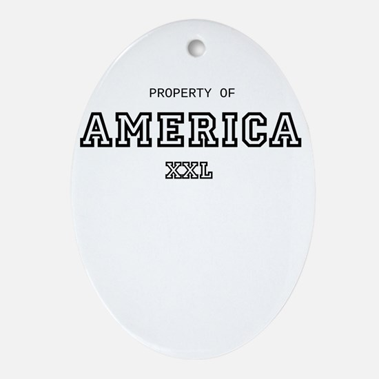 property of america Ornament (Oval)
