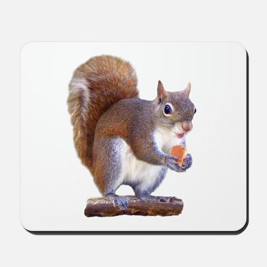 Squirrel on Log Mousepad
