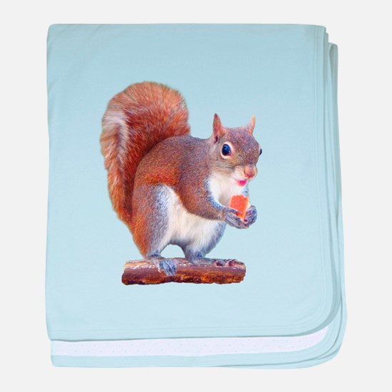 Squirrel on Log baby blanket