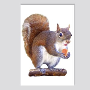 Squirrel on Log Postcards (Package of 8)