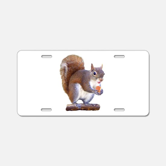 Squirrel on Log Aluminum License Plate