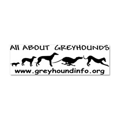 All About Greyhounds Car Magnet 10 x 3
