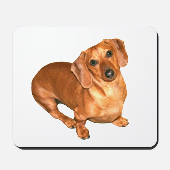 Tiger Doxie Mousepad