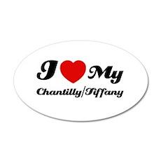I love my Chantilly/Tiffany 22x14 Oval Wall Peel