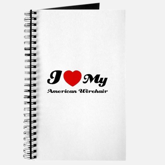 I love my American wirehair Journal