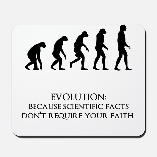 I love evolution Mousepad