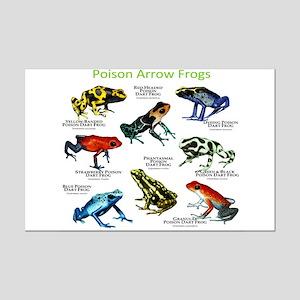 Poison Dart Frogs of the Amazon Mini Poster Print