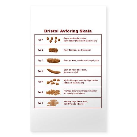 Bristol Avföring Skala Sticker (Rectangle)