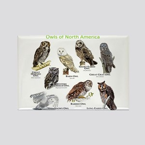 Owls of North America Rectangle Magnet