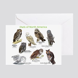 Owls of North America Greeting Card