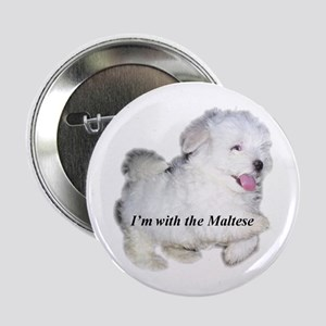 I'm with the Maltese Button