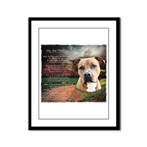 """""""Why God Made Dogs"""" AmStaff Framed Panel Print"""