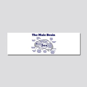 The Thinking Man's Car Magnet 10 x 3