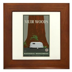 Muir Woods 1 Framed Tile