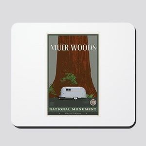 Muir Woods 1 Mousepad