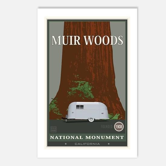 Muir Woods 1 Postcards (Package of 8)