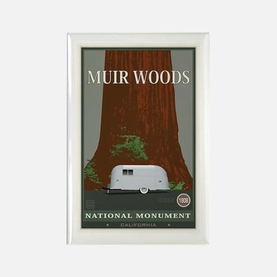 Muir Woods 1 Rectangle Magnet