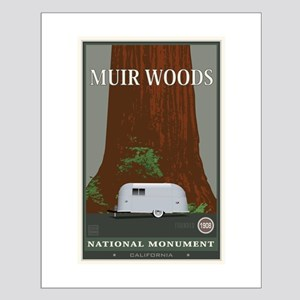 Muir Woods 1 Small Poster