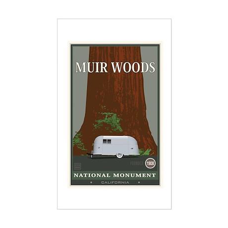 Muir Woods 1 Sticker (Rectangle)