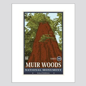 Muir Woods 3 Small Poster