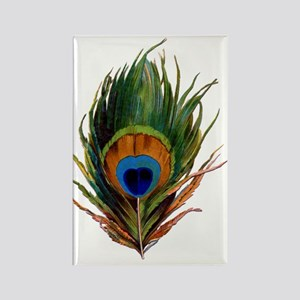 Peacock Plume Rectangle Magnet