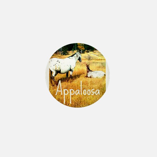 Appaloosa Mini Button