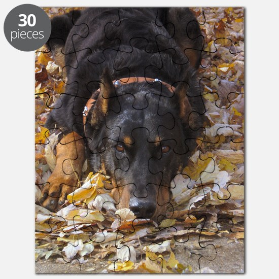 Beauceron Leaves Puzzle