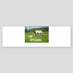 Beautiful Appaloosa Sticker (Bumper)