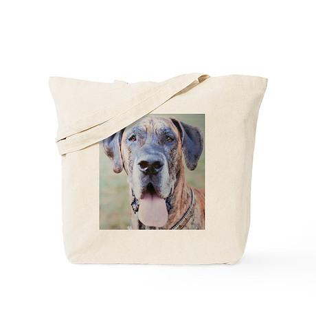 Jamie CL Cropped Tote Bag