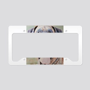 Jamie CL Cropped License Plate Holder