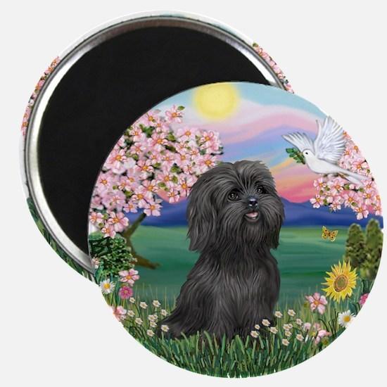 """Blossoms-ShihTzu#21 2.25"""" Magnet (10 pack)"""