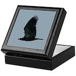 Young Eagle Flying Keepsake Box