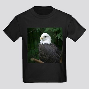eagle Ash Grey T-Shirt