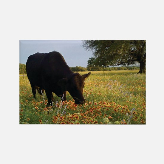 Texas Hill Country Rectangle Magnet
