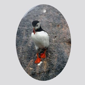 Puffin Sliding Ornament (Oval)